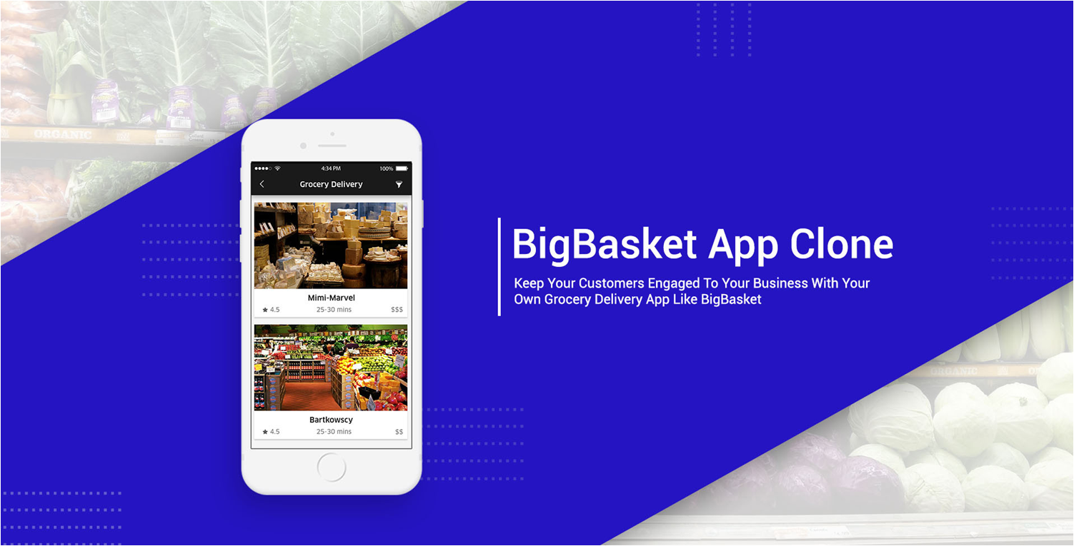 Big Basket Clone Script for your Business